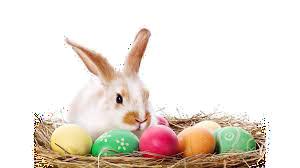 Ein schönes Osterfest....
